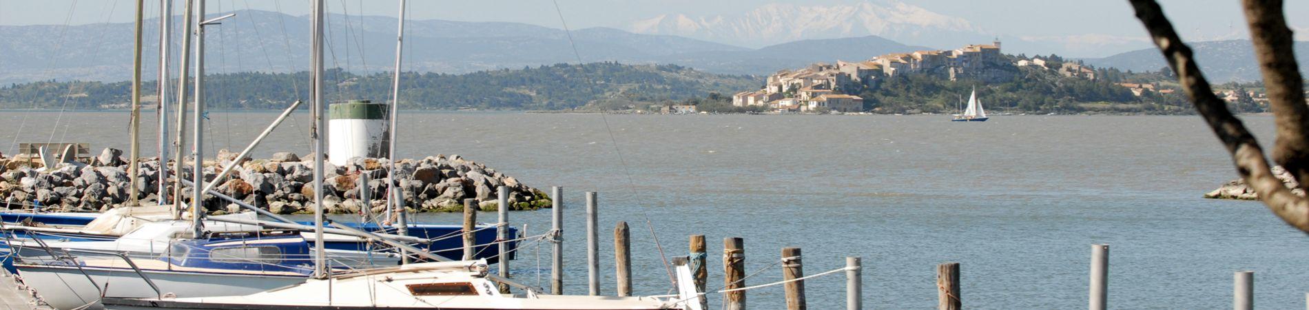 Bateaux au port à Bages