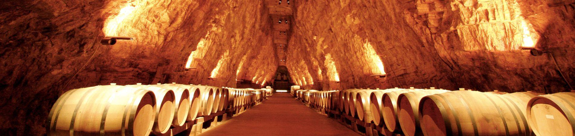 La cave de Terra Vinea